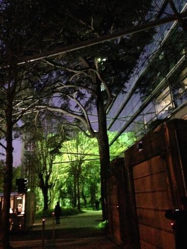 30 ans de la Fondation Cartier