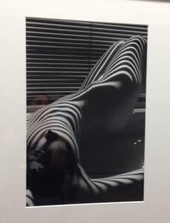 """13 novembre 2015 - mi-février 2016 - Grand Palais. """"Nu Zébré"""" Lucien Clergue (1934-2014) https://thegazeofaparisienne.com/2014/11/18/lucien-clergue"""