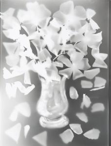 """N°133 -Edouard Boubat """" Vase"""" 1995 Positif sur papier photosensible par l'auteur, signature au verso. 40 X30 Pièce unique Vente 16/10/2015 -Thierry de Maigret - Coll Edouard Boubat"""
