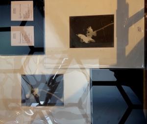 273 - 4 photogrammes de fleurs, est : 25/30000€