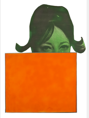 Martial Raysse La France orange, 1963 Nathalie Serroussi