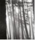 Catalogue Bae Bien-U - d'Une forêt à l'autre. Ed. Somogy