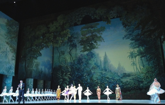La Bayadère - Opéra Bastille ©Thegazeofaparisienne
