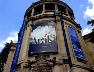 Musée Guiment Exposition Araki ©Thegazeofaparisienne