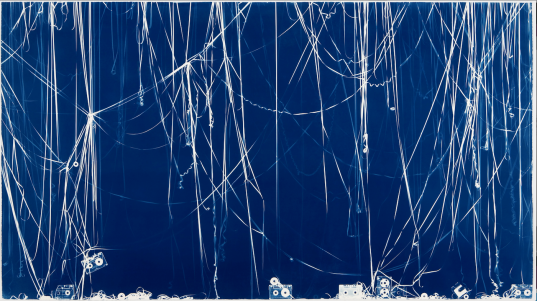 Christian Marclay Memento, 2008 , Cyanotype © Christian Marclay, courtoisie de Paula Cooper Gallery NY
