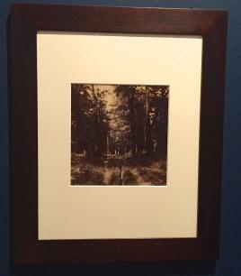Gustave Le Gray Forêt de Fontainebleau vers 1855 ©Thegazeofaparisienne