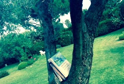 le livres de l'été