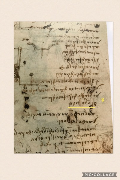 (*highlighted in yellow) a page from Codex Atlanticus indicating that *eight studies on the Saint exist. Excerpted document from the MET catalogue