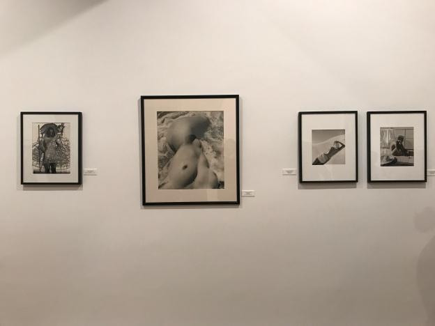 """Galerie Sophie Scheidecker """"La beauté mise à nu"""""""