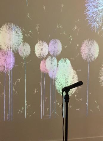 """Dispositif interactif """"Les Pissenlits""""de Edmond Couchot et Michel Bret"""