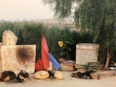 """Ron Amir """"La cuisine de Khamis"""" 2015"""