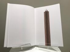 """Amélie Scotta """"Towers"""" 2017 Livre d'artiste, série de 100 photomontages"""